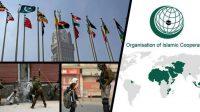 OIC International organizations Kashmir