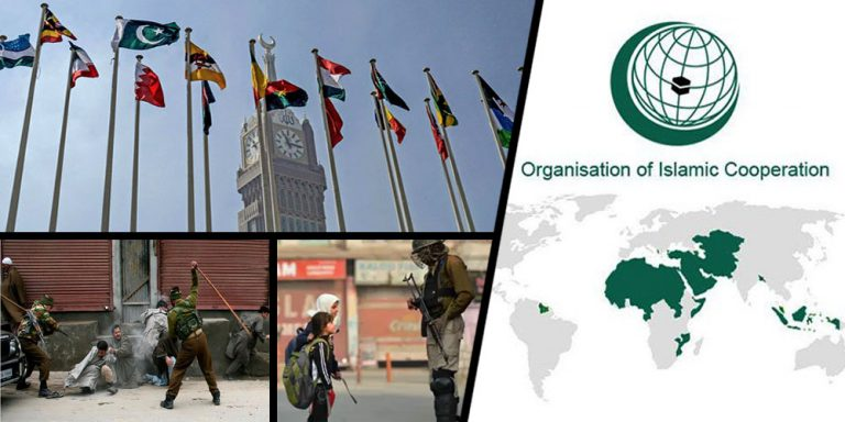 OIC International organizations Kashmir