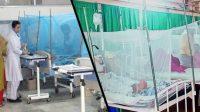 144 dengue cases registered in Karachi