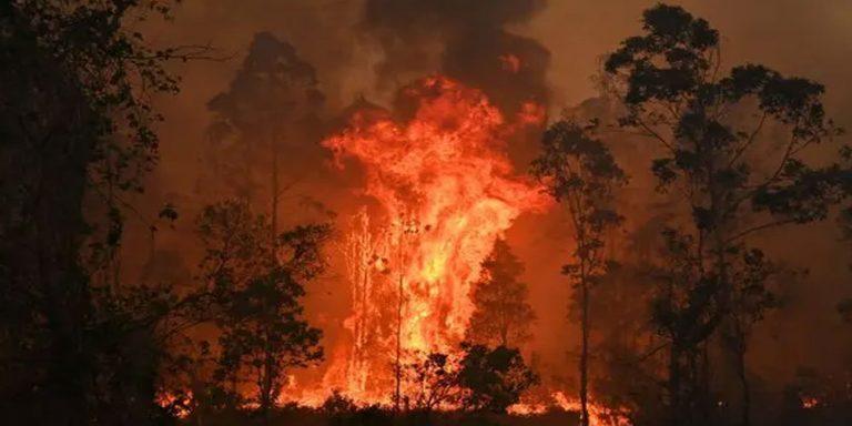 Australia bushfire kills three
